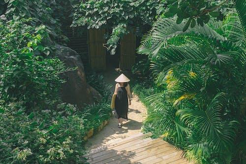 Woman in Black Dress Walking on Wooden Pathway