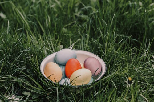 Easter eggs in bowl on meadow in daytime