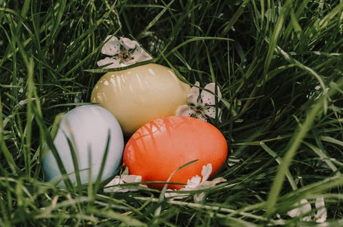 Painted eggs with shadows and blooming flowers on lawn during Easter holiday on sunny day