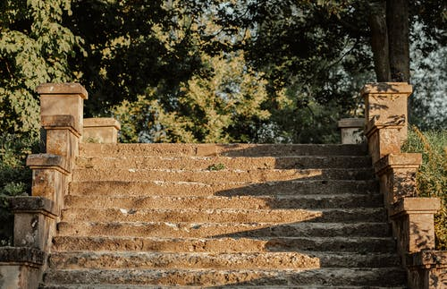 Aged stone steps in green park on sunny day