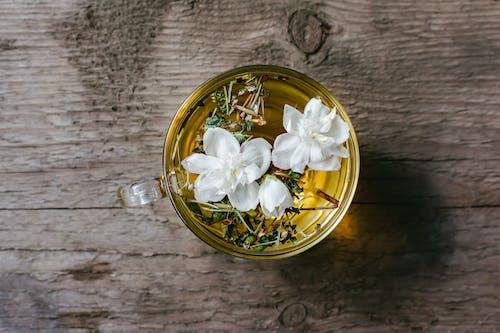 jasminum sambac, アラビアンジャスミン, インドアの無料の写真素材