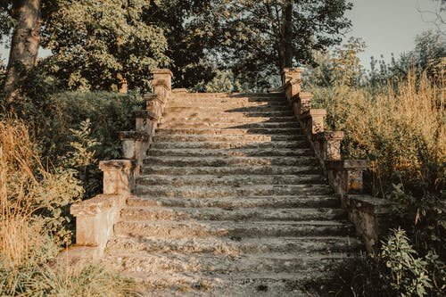 Old shabby stone stairway amidst lush green trees and grass on sunny day in park