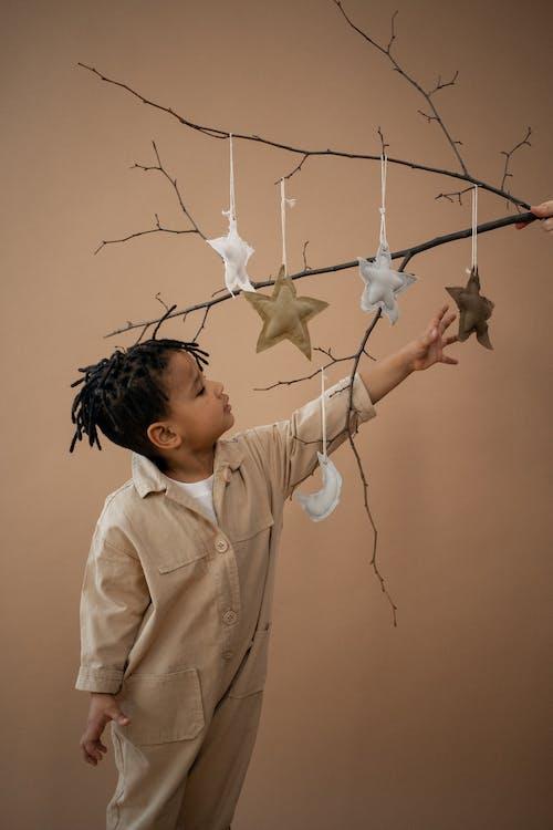 Ingyenes stockfotó afro-amerikai fiú, ág, áll témában