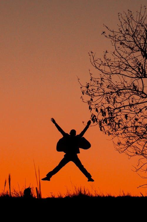 Free stock photo of evening sun, freedom, outdoor adventure
