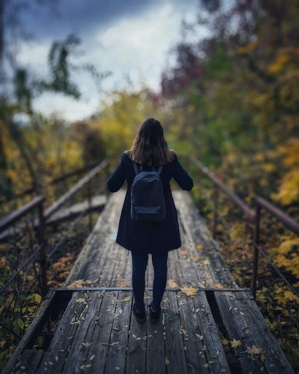 alleen, backpack, bomen