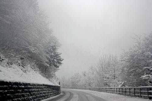 Бесплатное стоковое фото с деревья, дорога, дымка, живописный