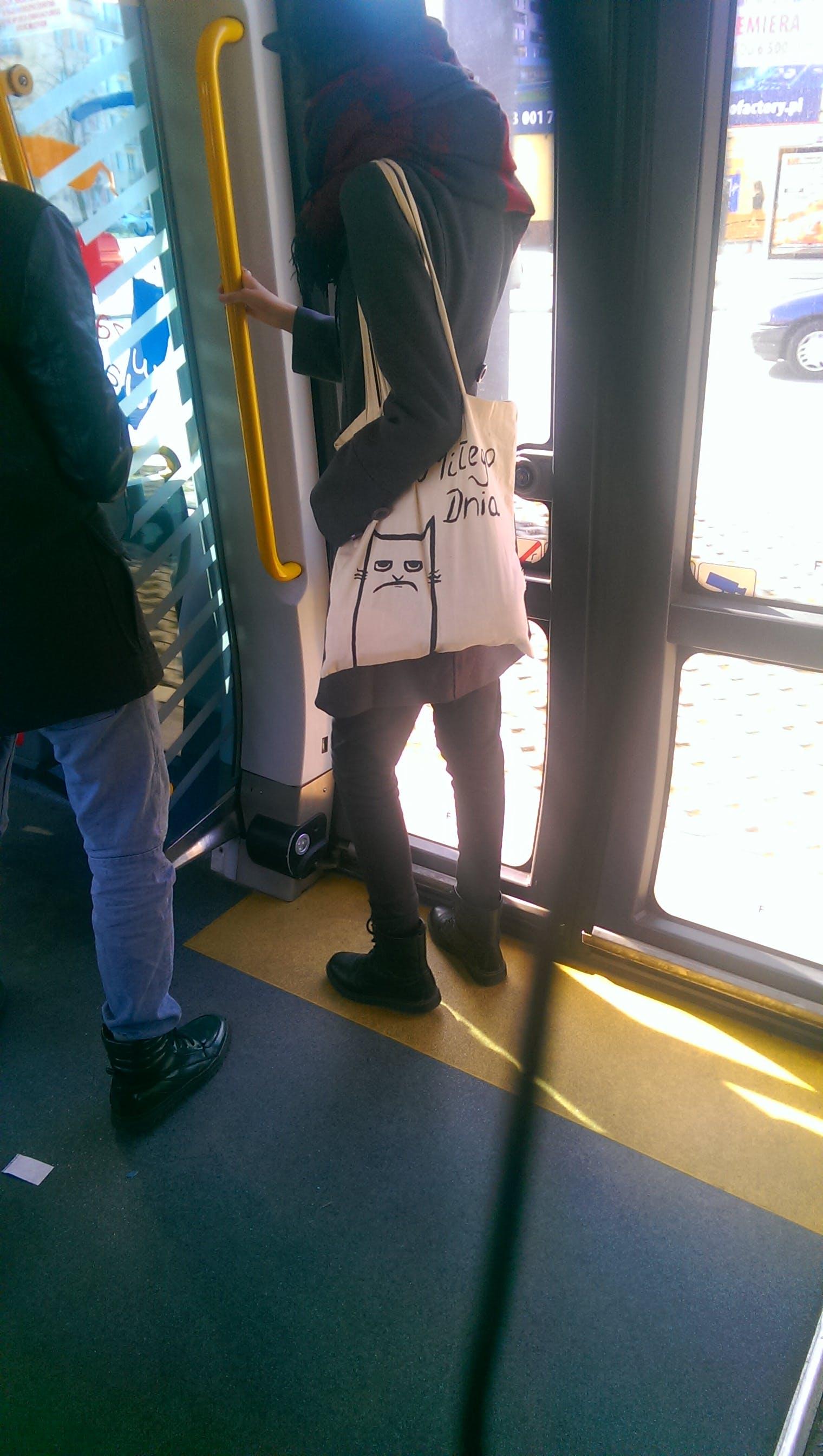 bag, cat
