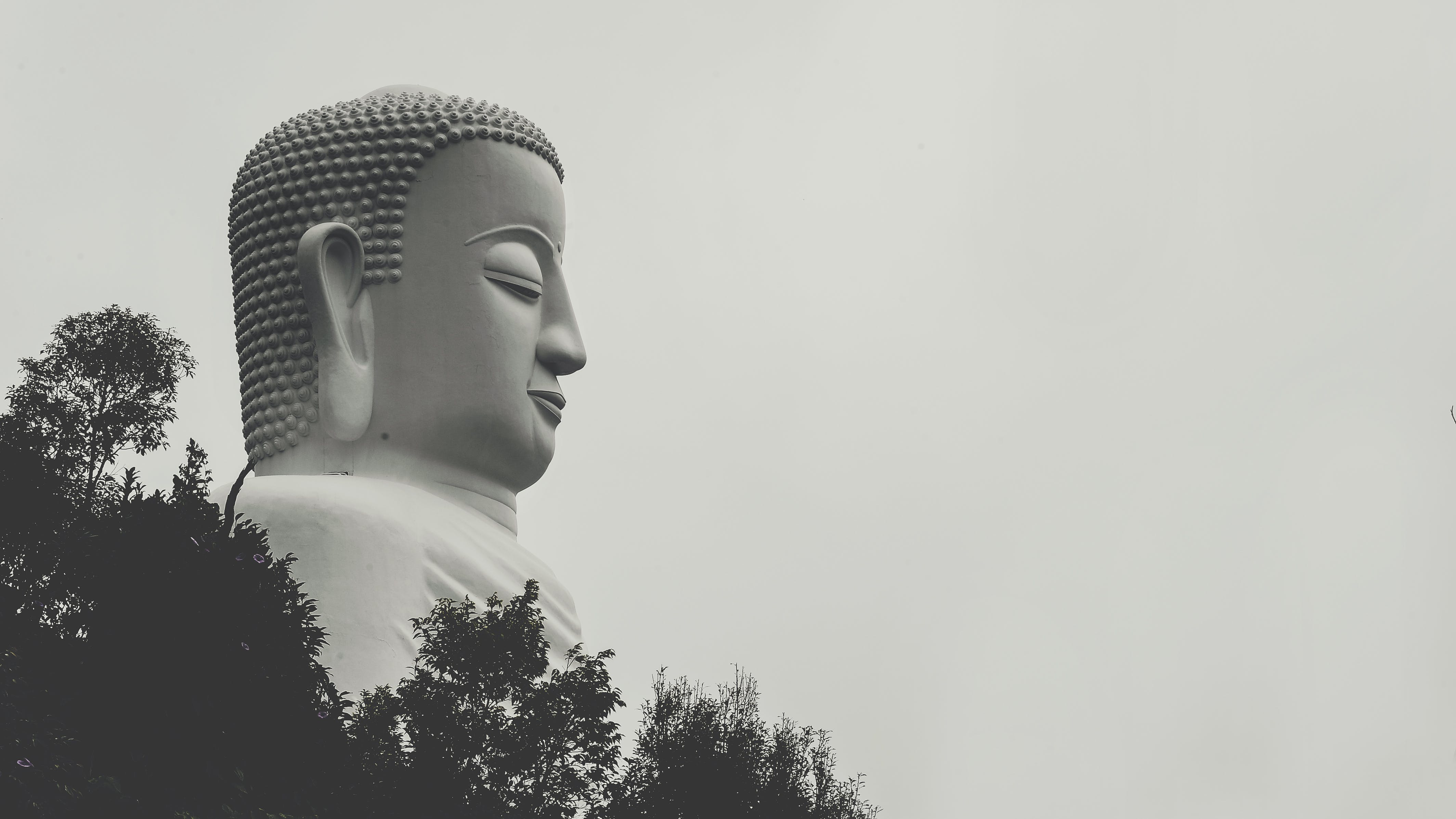 Buddha Statue Grayscale Photo