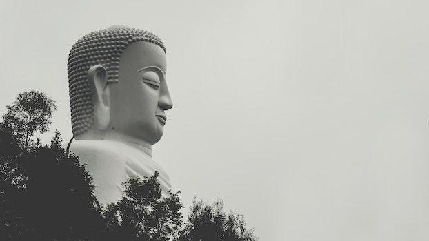 Buddha Statue Grayscale Photo