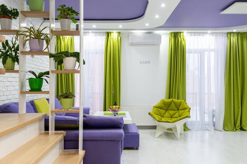 Interior of modern living room with bright purple sofa and ceiling and green armchair and curtains decorated with potted plants placed on creative shelves