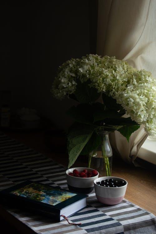 Foto stok gratis alami, aromatik, baca