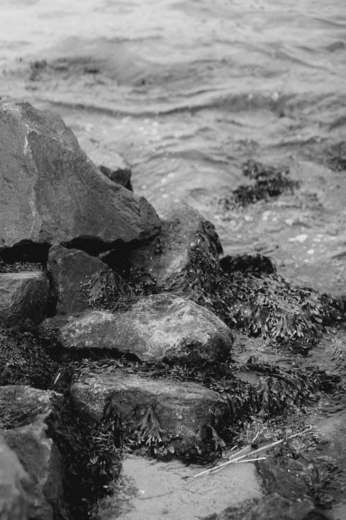 Black and white of stormy sea washing rough rocky shore in nature in daytime