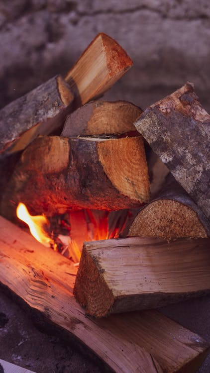 Close-up Photo of Firewood