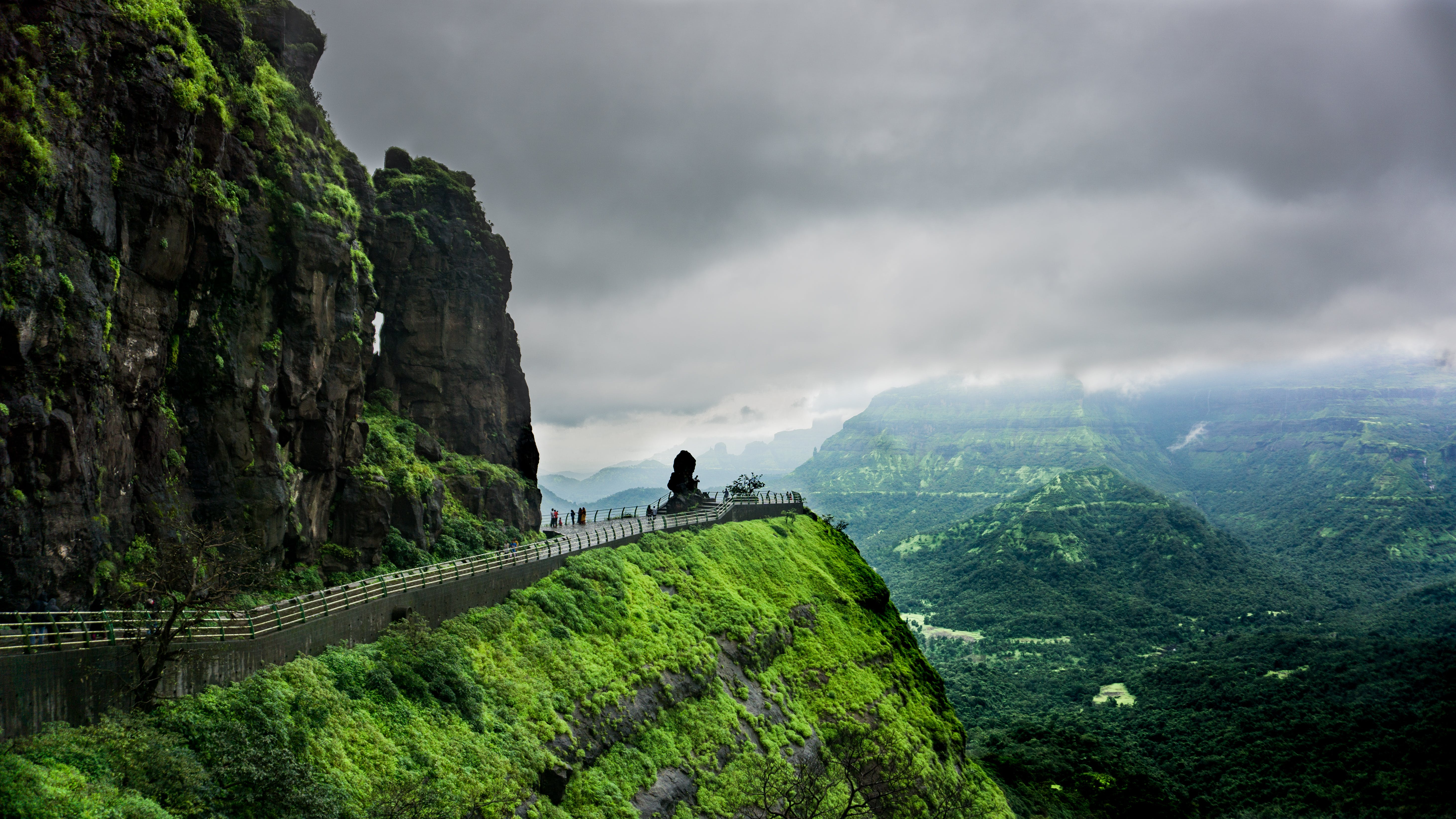 Free stock photo of crest, green, monsoon, nature