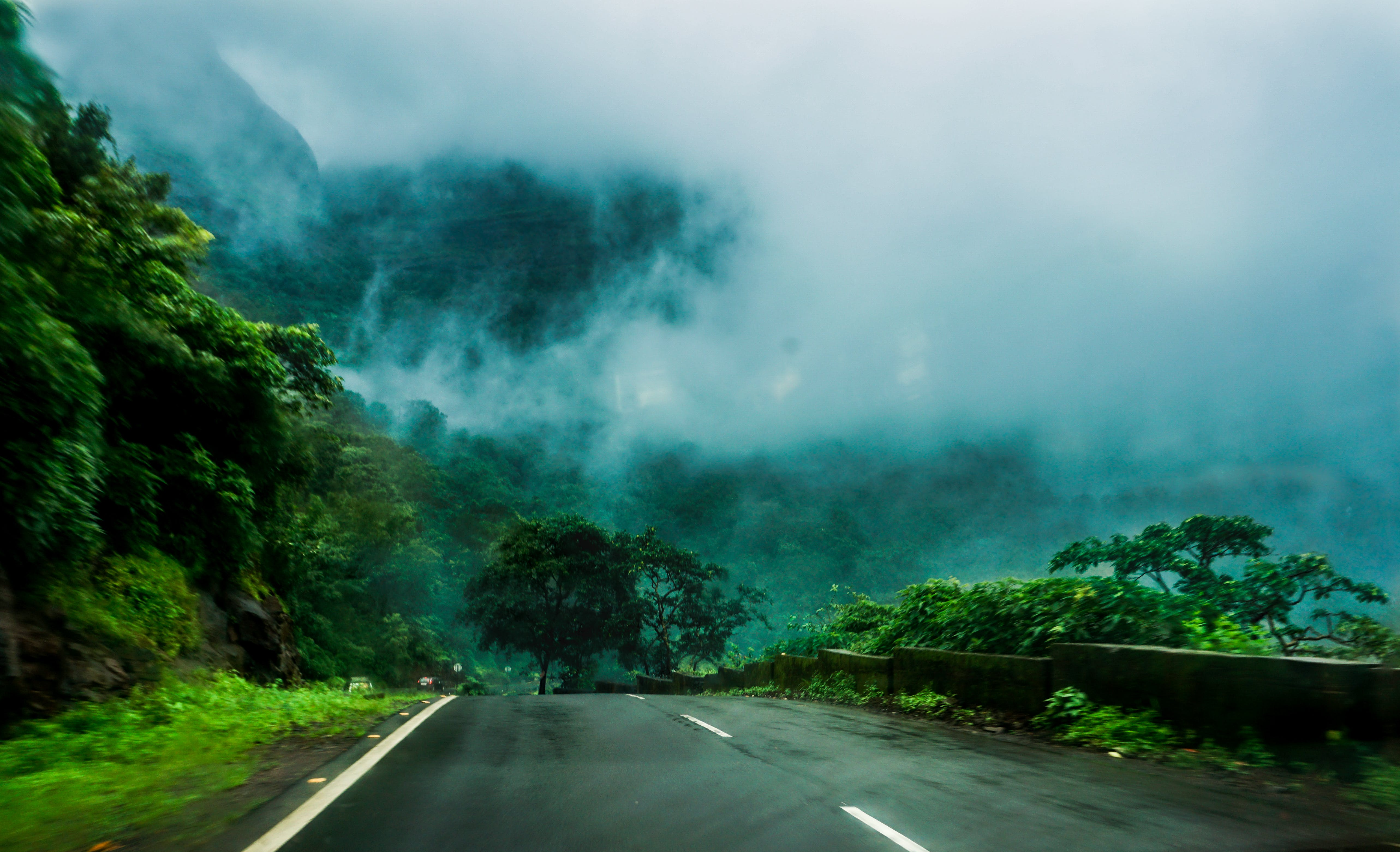 Free stock photo of clouds, green, monsoon, nature trail