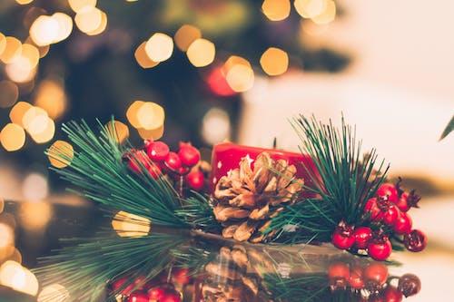 Безкоштовне стокове фото на тему «декор, кольори, Різдво, різдвяні прикраси»