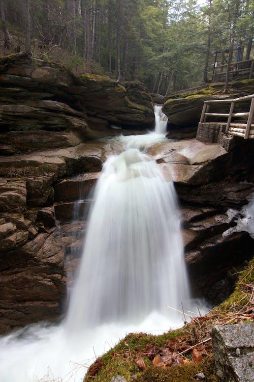 Gratis lagerfoto af å, lang eksponering, sten, vand