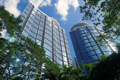 Immagine gratuita di acciaio, alberi, alto, architettura