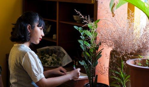 Foto d'estoc gratuïta de bonic, cassola, creixement, dama