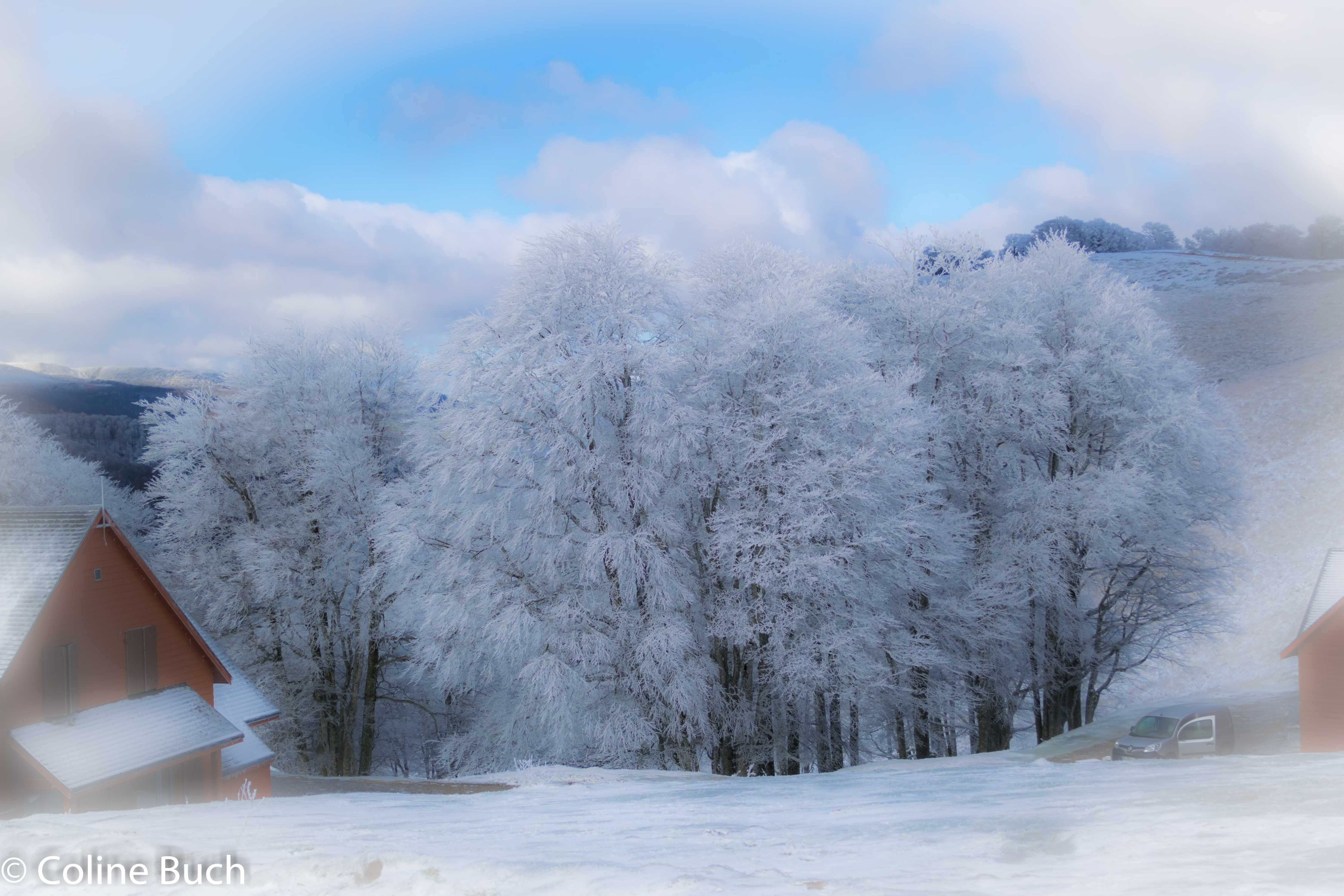 Free stock photo of arbres, Chalet Irati, chalets, givre