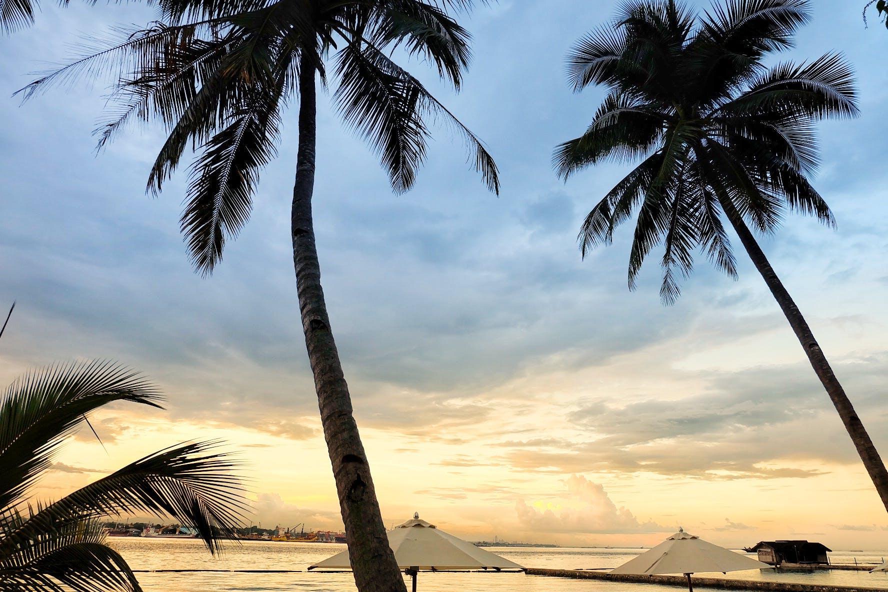 Free stock photo of beach, sky, sunset