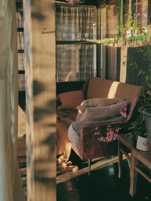 Free stock photo of bench, decor, decoration