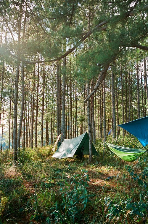 Free stock photo of 35mm film, barbaric, camping