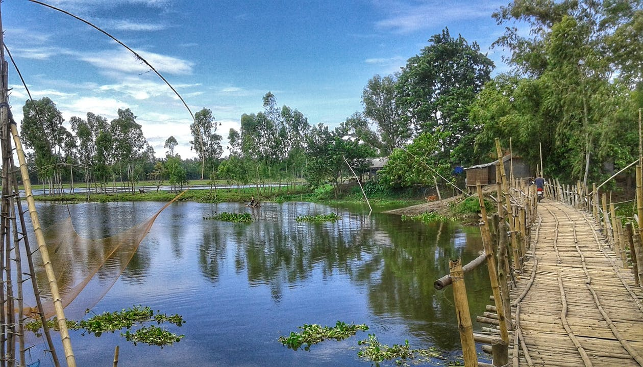 Free stock photo of bamboo bridge