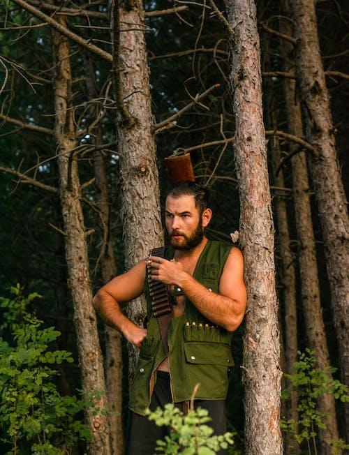 Kostenloses Stock Foto zu bäume, draußen, dschungel-hintergrund