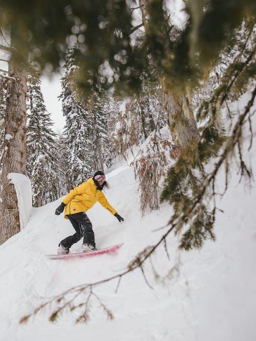 休閒, 冒險, 冬天的背景 的 免費圖庫相片