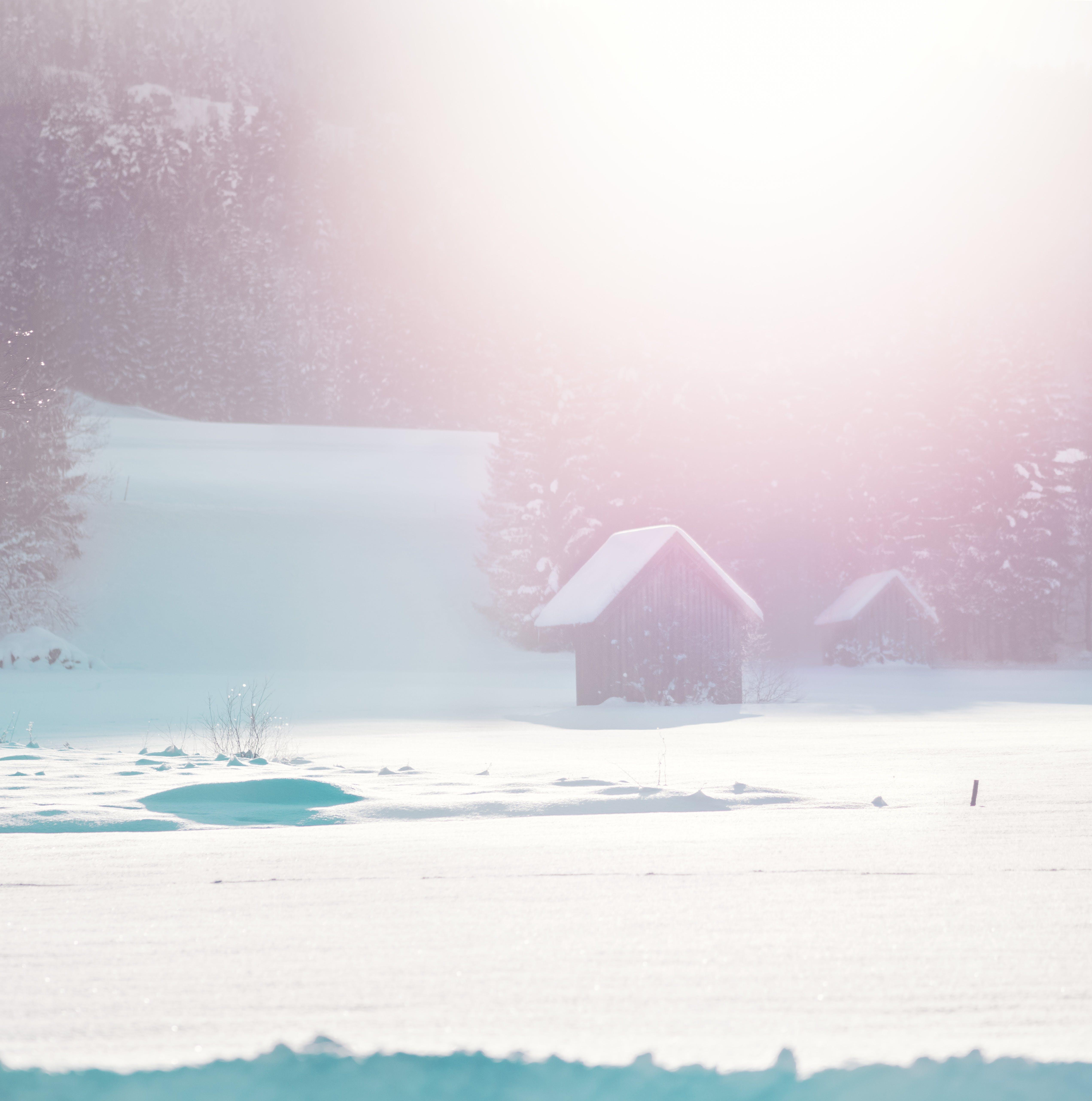 冬季, 冬季景觀, 冰, 冷 的 免費圖庫相片