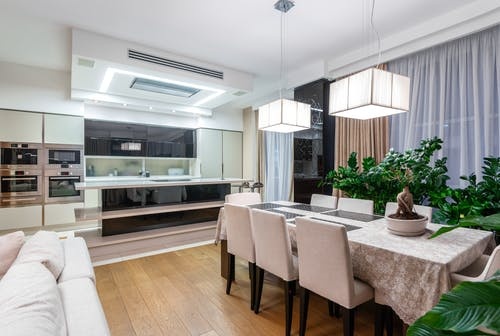 Spacious dining room with large table and green potted plants placed near kitchen area in modern apartment