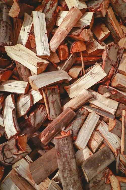 Close-Up Shot of Chopped Firewoods