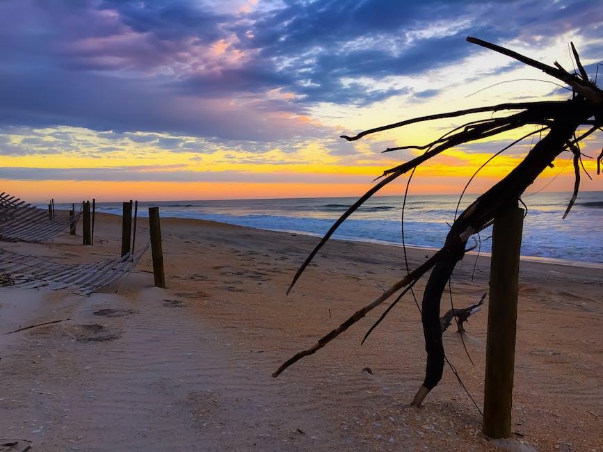 New free stock photo of sea, sunset, beach