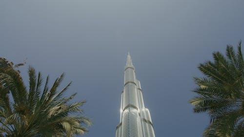 UAE, アラブ, エミレーツの無料の写真素材