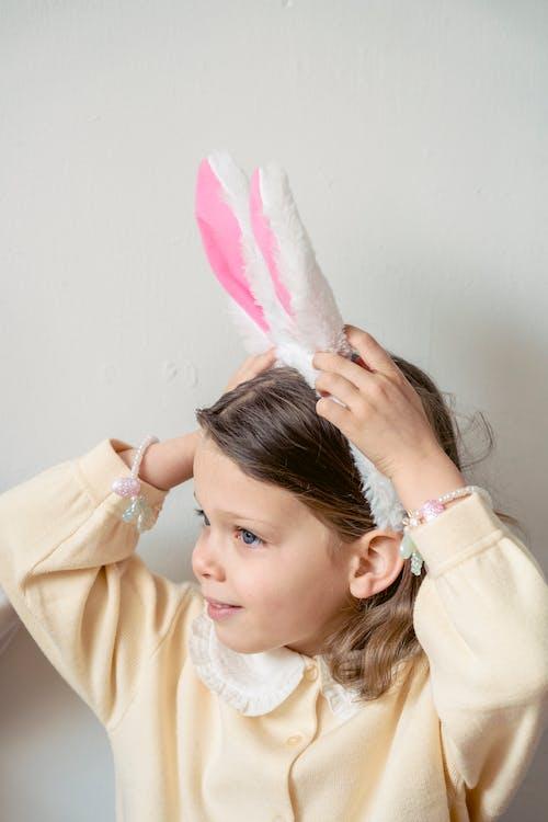 คลังภาพถ่ายฟรี ของ กระต่าย, การกำเนิด, การปรากฏ