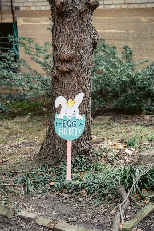 Wooden signpost with inscription Egg Hunt with directing arrows placed in spring park during Easter holiday