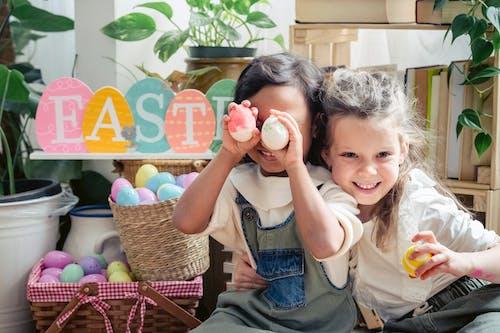 가벼운, 계란, 관계의 무료 스톡 사진