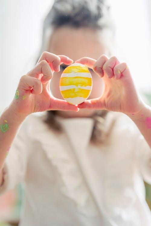 가벼운, 계란, 계절의 무료 스톡 사진