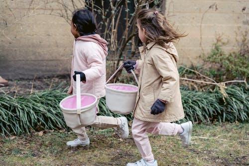 Fotos de stock gratuitas de abrigo, activo, adorable