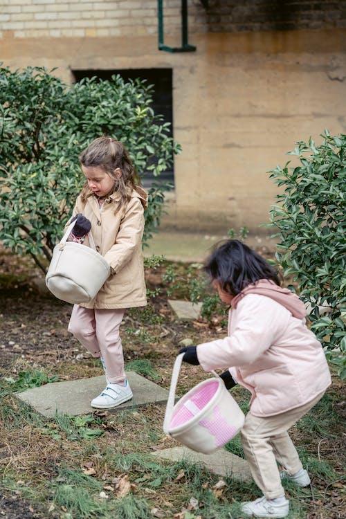 Fotos de stock gratuitas de abrigo, adorable, afuera