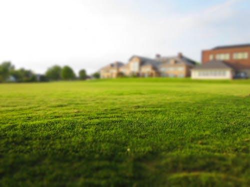Foto d'estoc gratuïta de finca, herba, immoble, prat