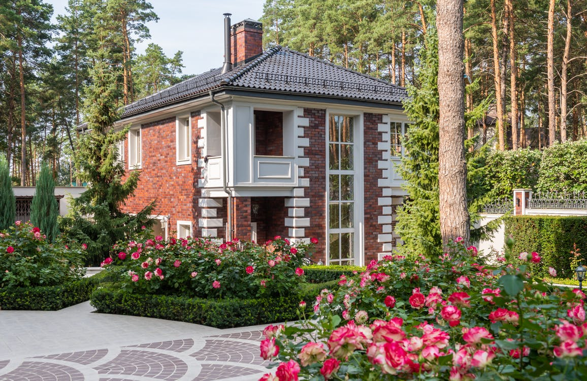 Flowers and green plants with trees in yard with pathway near cottage exterior in sunny summer day
