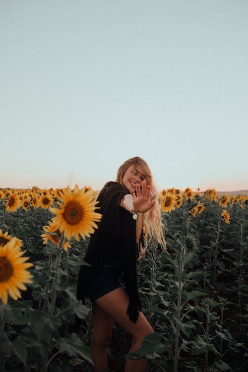 Imagine de stoc gratuită din câmp, cer, fata blonda