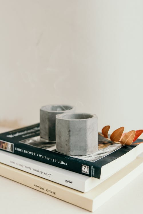 Geometric candle holders placed on pile of books near branch of plant in light room