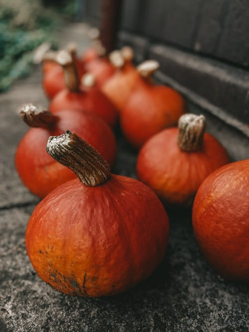 Pile of pumpkins on ground