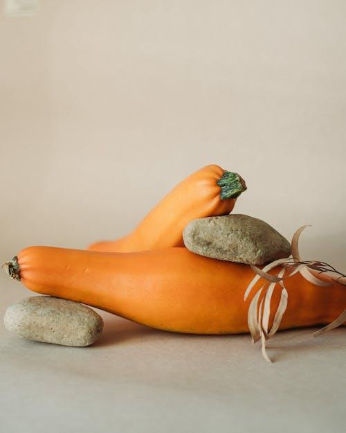 Ripe pumpkins with stones in studio