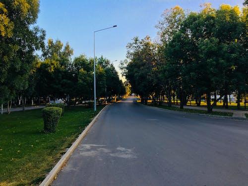 Free stock photo of road, sunset