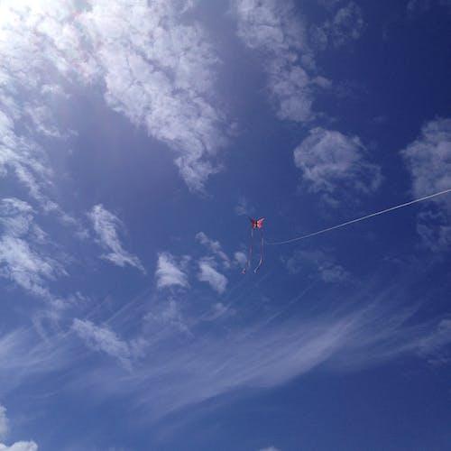 Free stock photo of blue sky, kite, light clouds