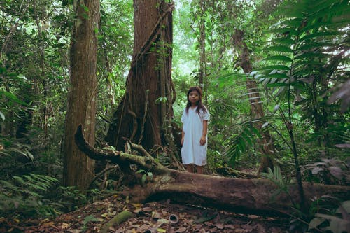 Photo Of Young Girl Standing Behind Tree Trunk